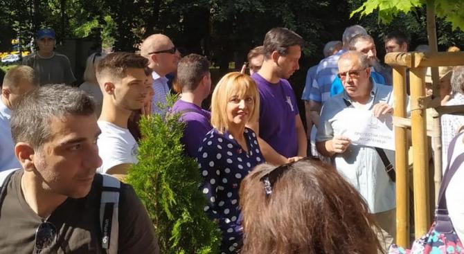Мая Манолова поиска ревизия на всички разрешителни за строеж в зелени площи в София