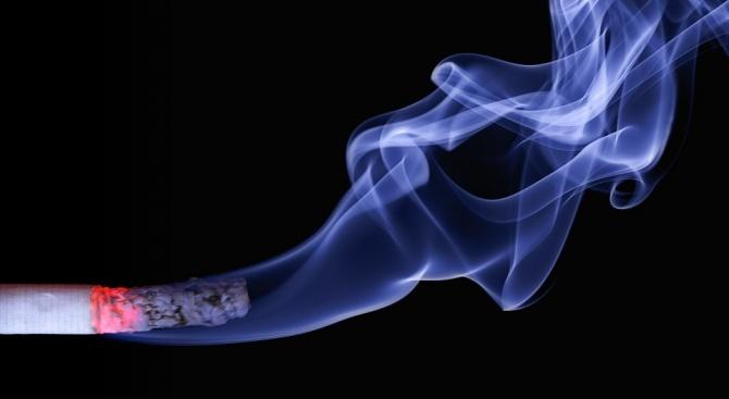 Откриха 3000 къса контрабанден тютюн в камион, шофиран от македонец