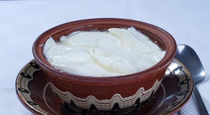 Празник на киселото мляко в Трън