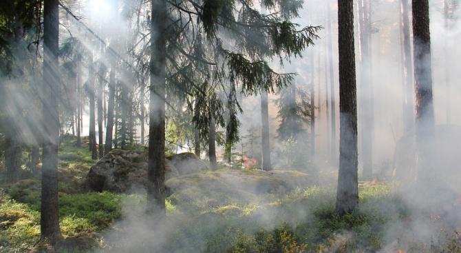 Обявиха екстремален индекс за пожароопасност в райони на Добричко