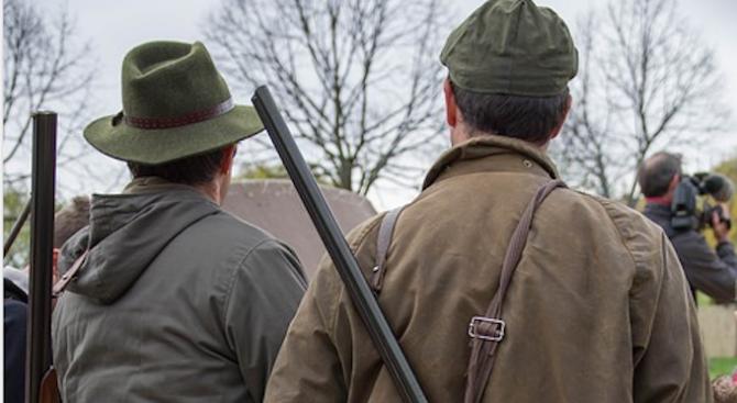 Обучават ловците заради случаите на чума по свинете