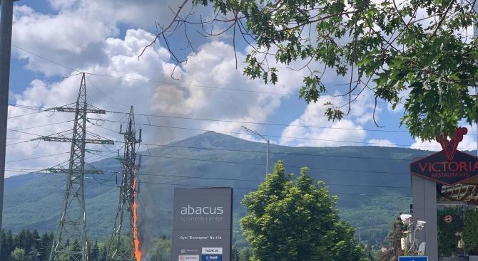 Електрически стълб пламна на столичен булевард