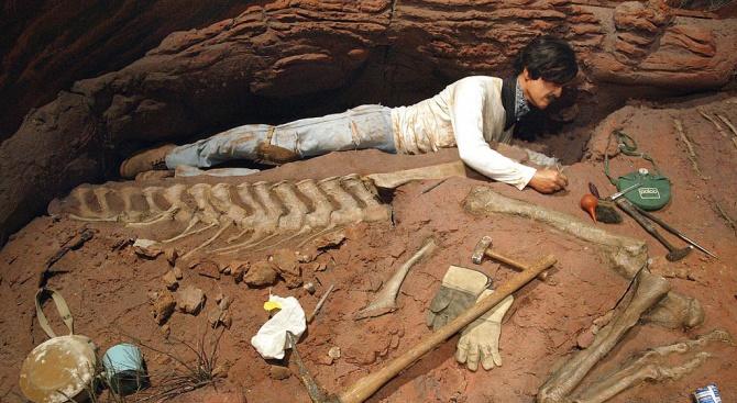 Откриха двуметрова кост на динозавър във Франция