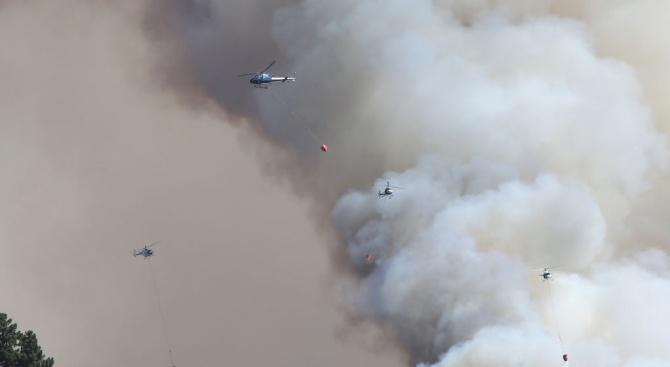 Биолог: Изгорялата територия в Сибир е колкото Гърция
