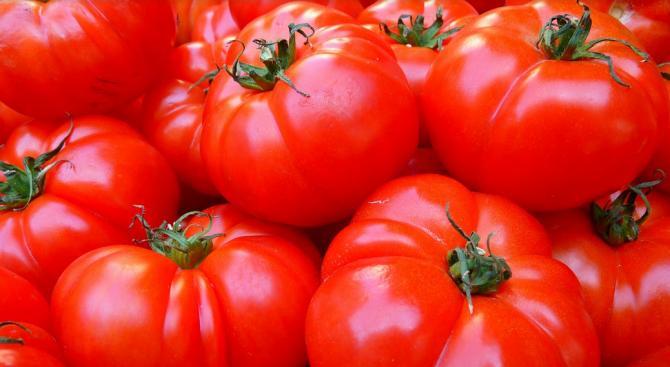 Защо цените на доматите удариха рекордни нива?