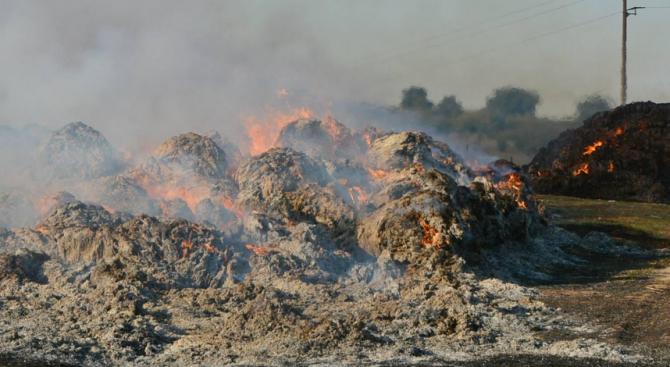 Пожар гори в депото за отпадъци в Шишманци