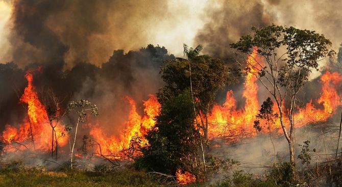 Стотици нови пожари пламнаха в Бразилия
