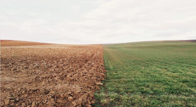Цената на земеделската земя в Русенско е над средната за страната