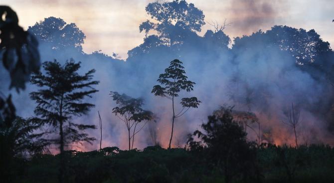 Пожарите в Амазония продължават, армията се включи в гасенето