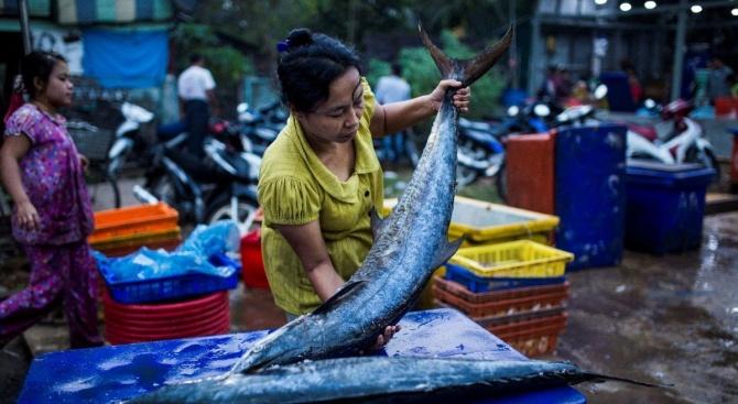 WWF: Половата дискриминация вреди на риболовната индустрия