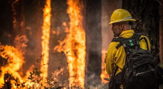 Пожар на остров Закинтос