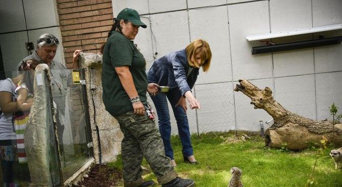 Йорданка Фандъкова и 900 доброволци ще обновяват столичния зоопарк