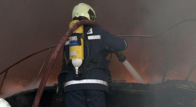 Води се разследване на палеж на горския фонд в района на гр. Сливница
