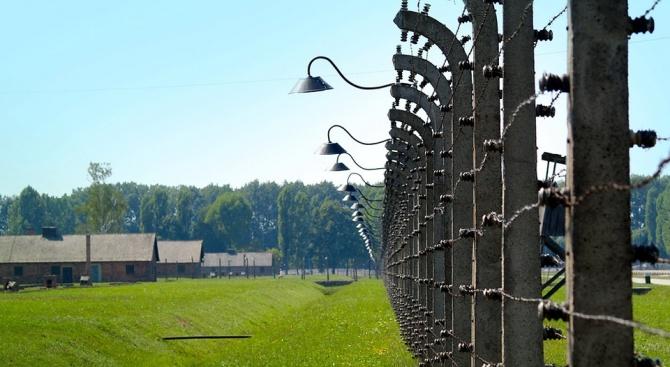 Археолози откриха масов гроб в бивш нацистки концлагер в Чехия