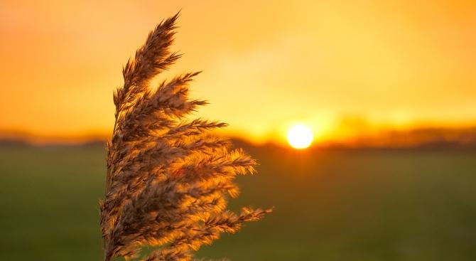Очаква ни поредният ден с летни температури