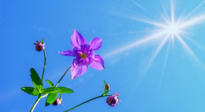 Времето и днес ще се задържи слънчево