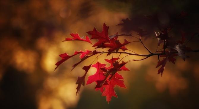 Днес настъпва есенното равноденствие
