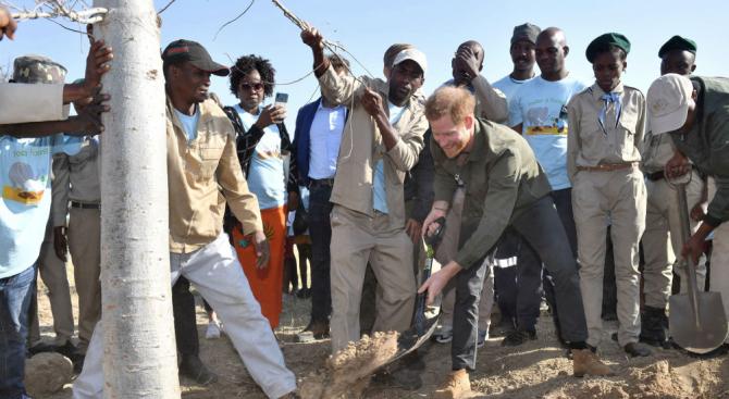 Принц Хари започна посещението си в Ботсвана със засаждане на дърво