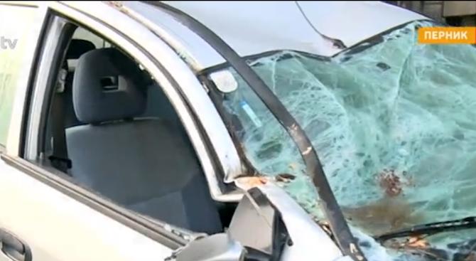 Собствениците на колата, смазана от дърво в София, ще търсят правата си по съдебен път