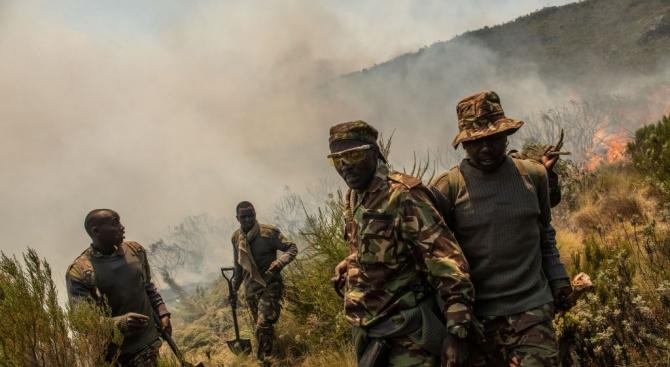 Най-малко 40 загинали при сражения между армията на Мали и терористи