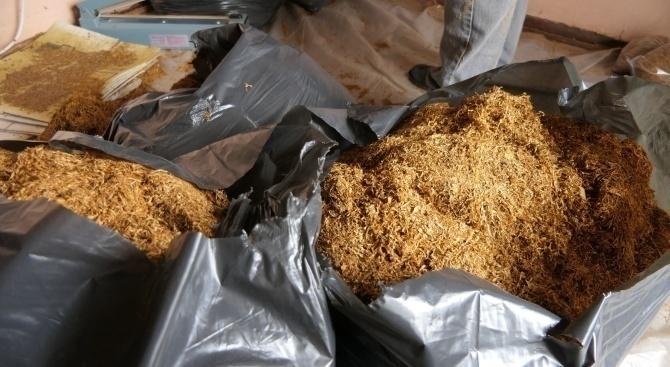 300 кг нелегален тютюн е иззет при акция на полицията в плевенско село