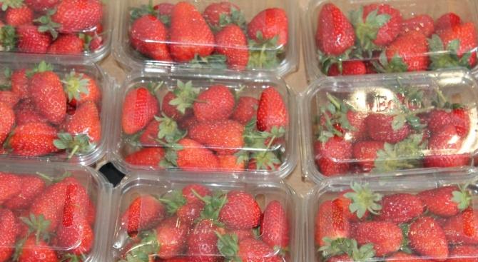 Химични вещества в опаковките на храни са опасни за мозъка
