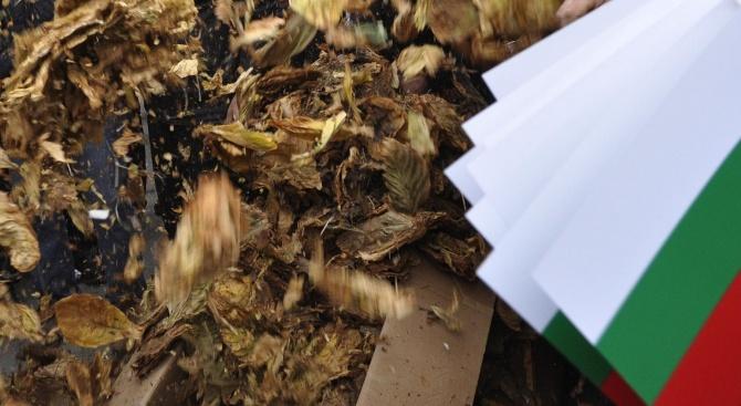 Тютюнопроизводителите в Благоевградско  са все по-малко