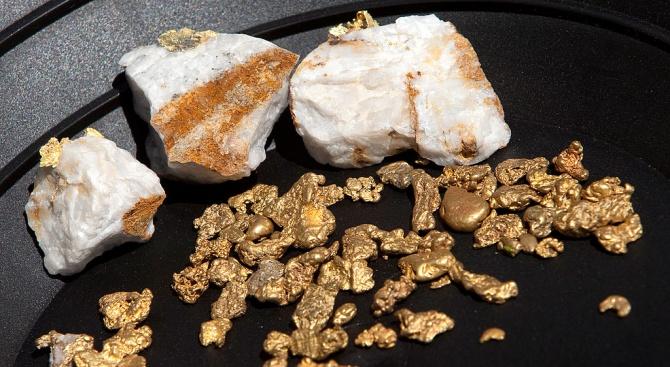 Бразилия започна операция срещу контрабанда на злато за 55 милиона долара