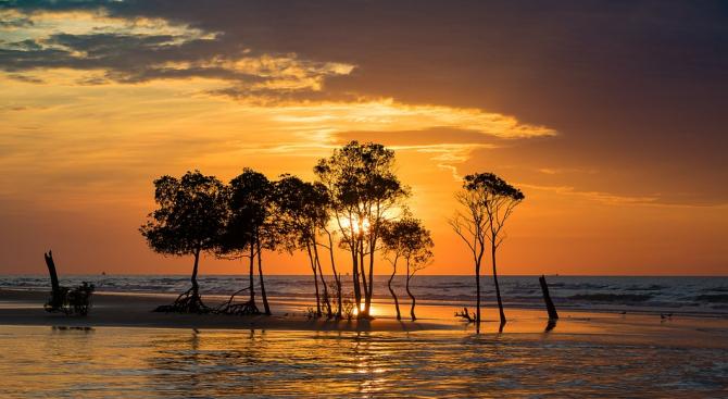 Австралия отчете нов рекорд за най-горещ ден