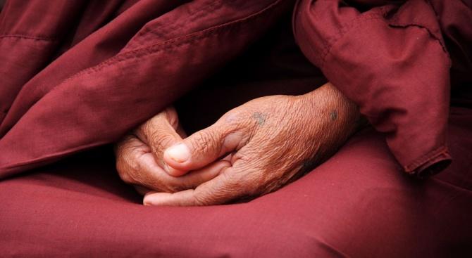 Котка подложи на изпитание будистки монах