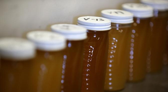 Унищожиха 39 кг пчелен мед в Долна баня