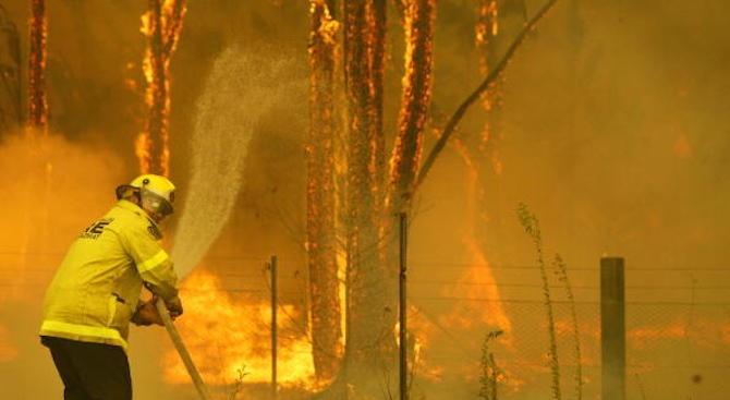 Българка в Канбера: Пожарът в Австралия е с грохот на излитащ Боинг