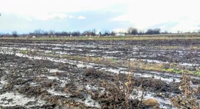 Нов протест срещу централата за биогаз в село Труд