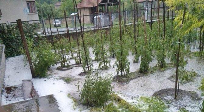 Създаването на гаранционен фонд за покриване на щети от природни бедствия ще даде голямо предимство на земеделския сектор