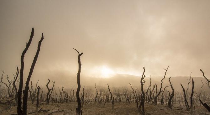 ДФЗ прави нов фонд за обезщетяване на земеделските производители от климатични бедствия