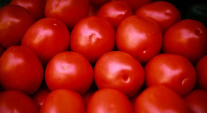 5000 тона домати от Турция чакат на руската граница с риск да се развалят