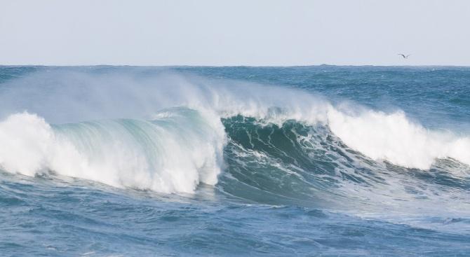 Петима сърфисти се удавиха край бреговете на Нидерландия