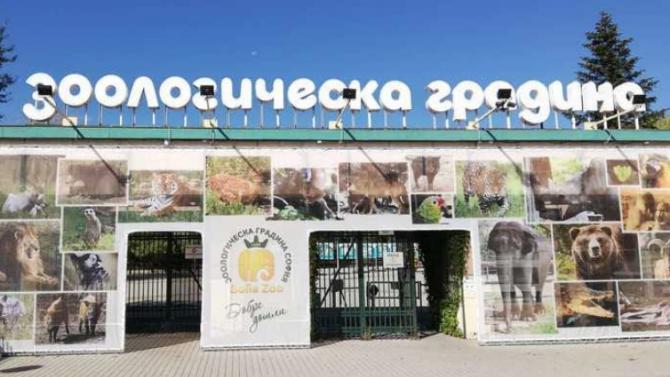 За Деня на детето Зоологическата градина на София ще е със свободен достъп