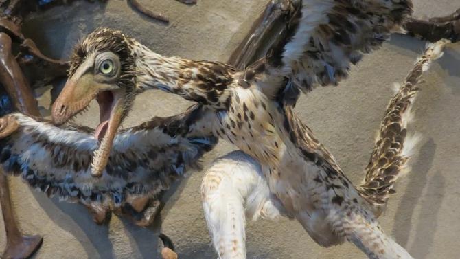 Откриха нов вид беззъб динозавър с два пръста и пера, наподобявал папагал