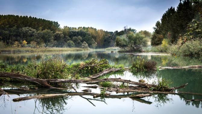 Доброволци почистиха и зарибиха река Въча