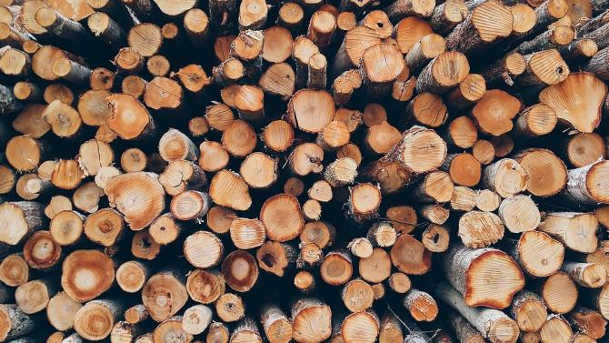 Кражба на дърва за огрев разкриха в Стражица