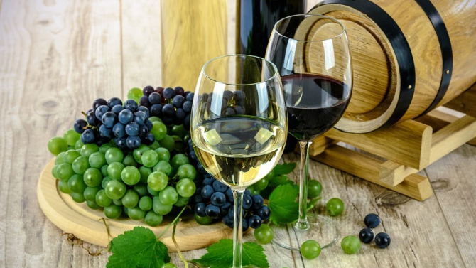 МЗХГ представи проекти на мерки в лозаро-винарския и горския сектор