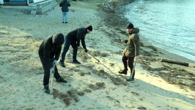 """Доброволци почистиха затревения плаж в парк """"Росенец"""""""