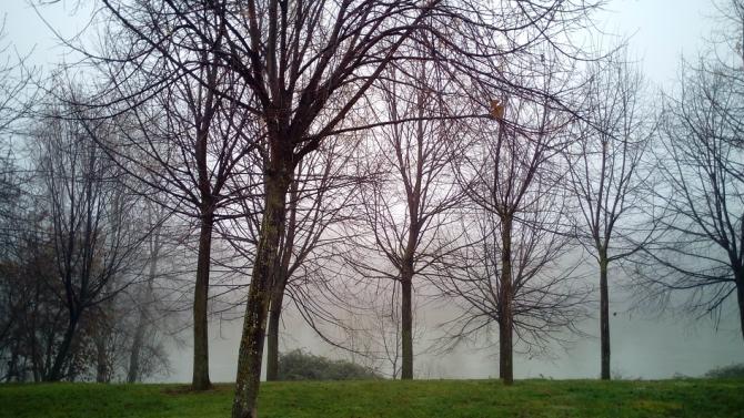 Вандали нанесоха щети на един от най-големите паркове в Свищов
