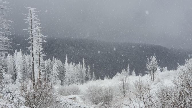 Хора с увреждания и доброволци ще изкачат Черни връх през март