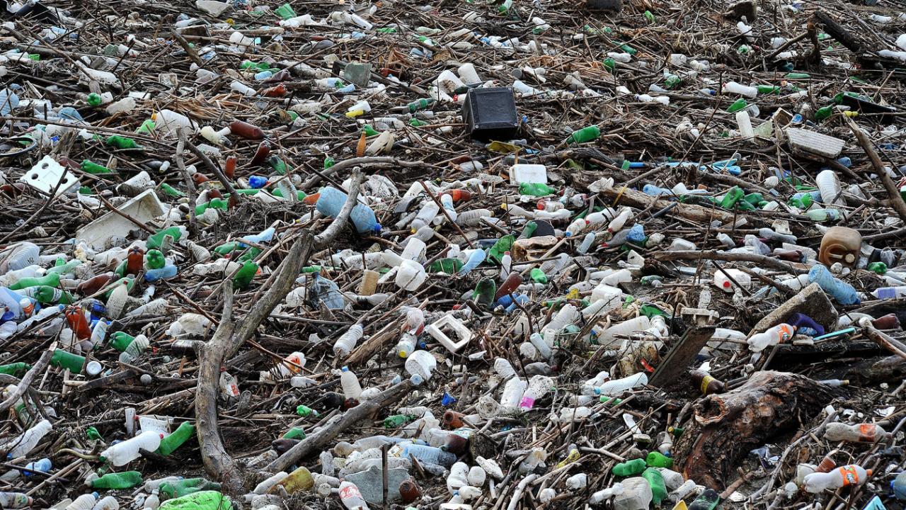 Доброволци събраха над 100 чувала с отпадъци от коритото на Струма в Перник