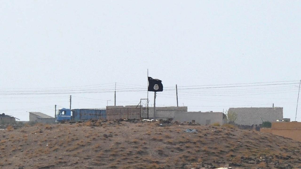 Американски съпрузи бяха  обвинени в опит да се присъединят към ИД