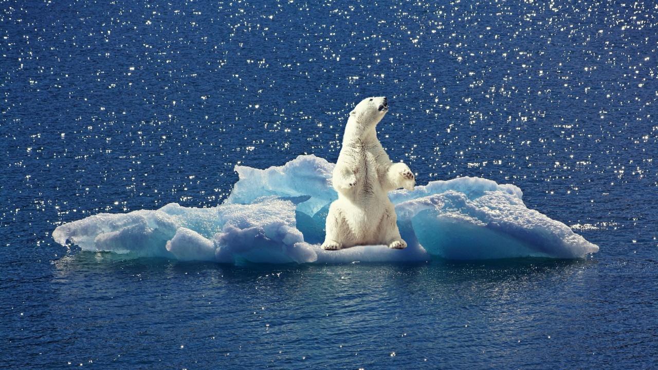 Ледниците стават нестабилни