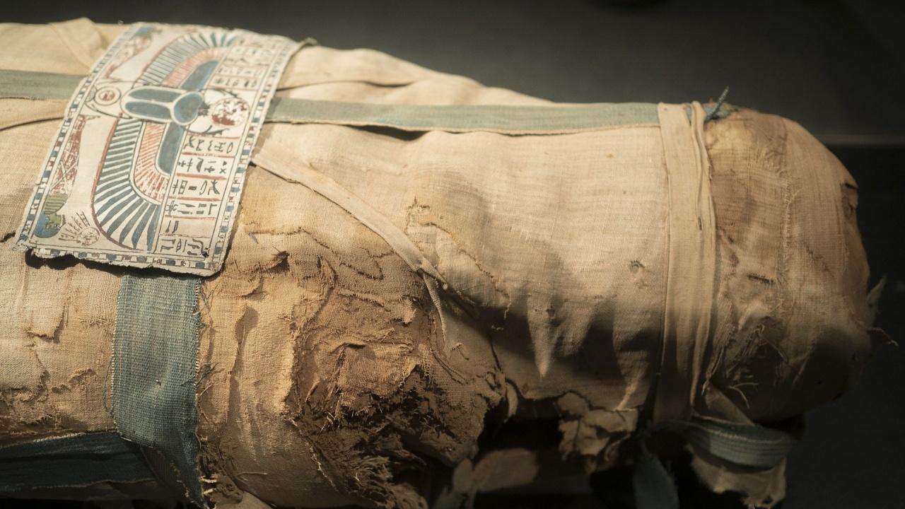 Откриха първата в света мумия на бременна жена