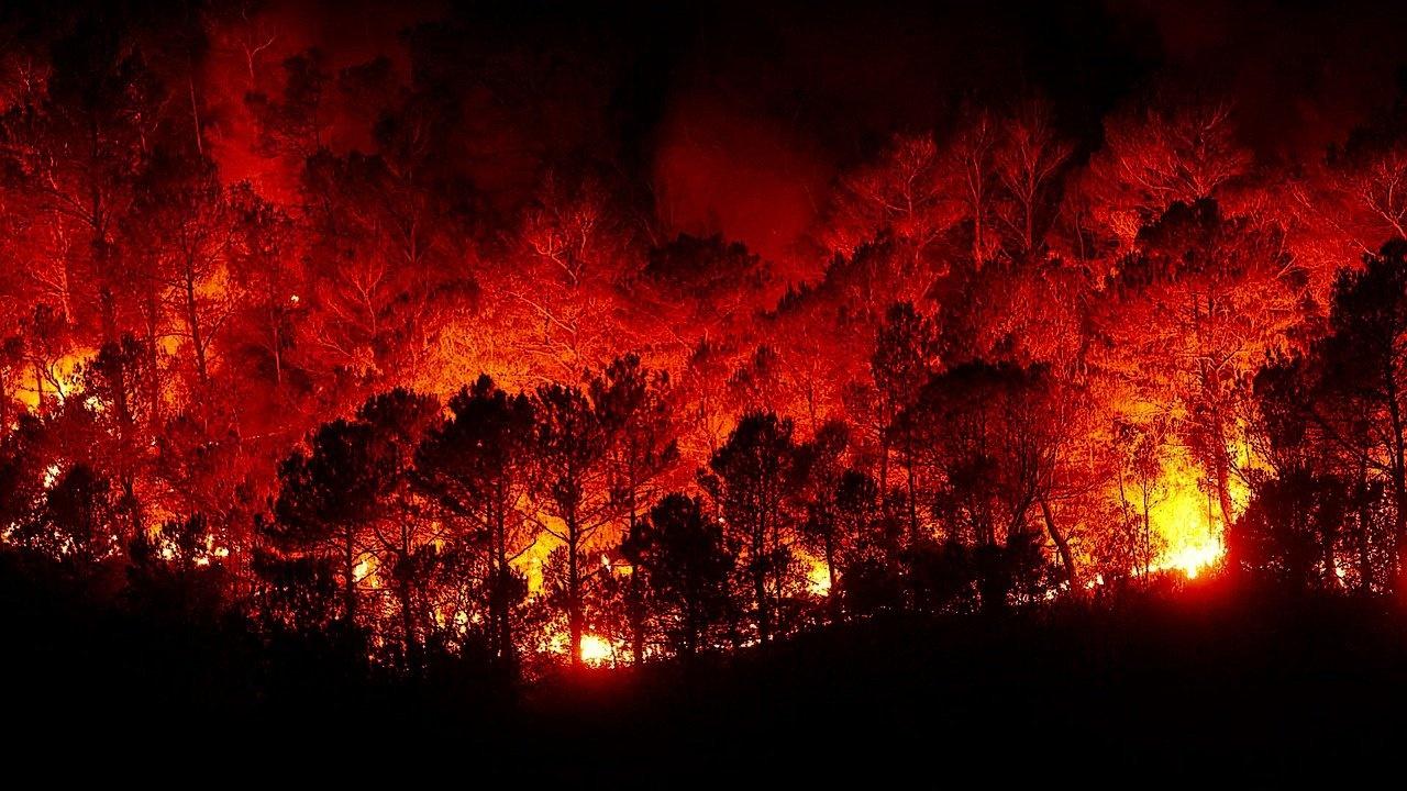 Силен горски пожар в Гърция доведе до евакуация на села и манастири